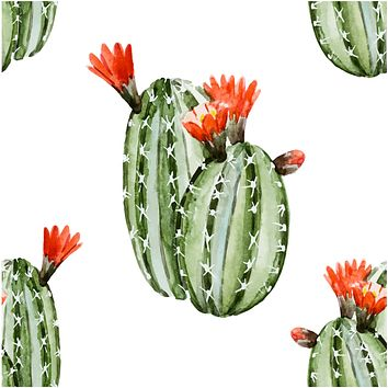 Big Green Cactus Tropical Flower Multicolored Wallpaper Reusable Removable Accent Wall Interior Art (wal077)