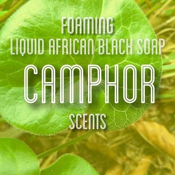 Fra Fra's Naturals | Premium Organic Raw Foaming African Black Soap Face and Body Wash - Camphor Scents