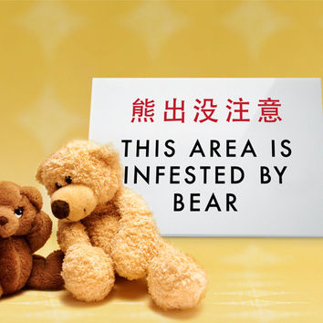 Cute Teddy Bear Sign. Funny Kids Room Decor. Silly Chinglish Humor. This area is infested by bear