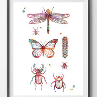 Insects collection Watercolor print insects poster dragonfly butterfly pupa coleoptera insects species art print enthomolgy art science art