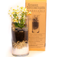 Organic Flower Terrarium Kit