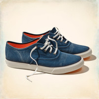Hollister Lace Up Sneakers