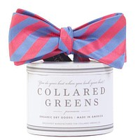Parlay Bow in Salmon/Blue by Collared Greens