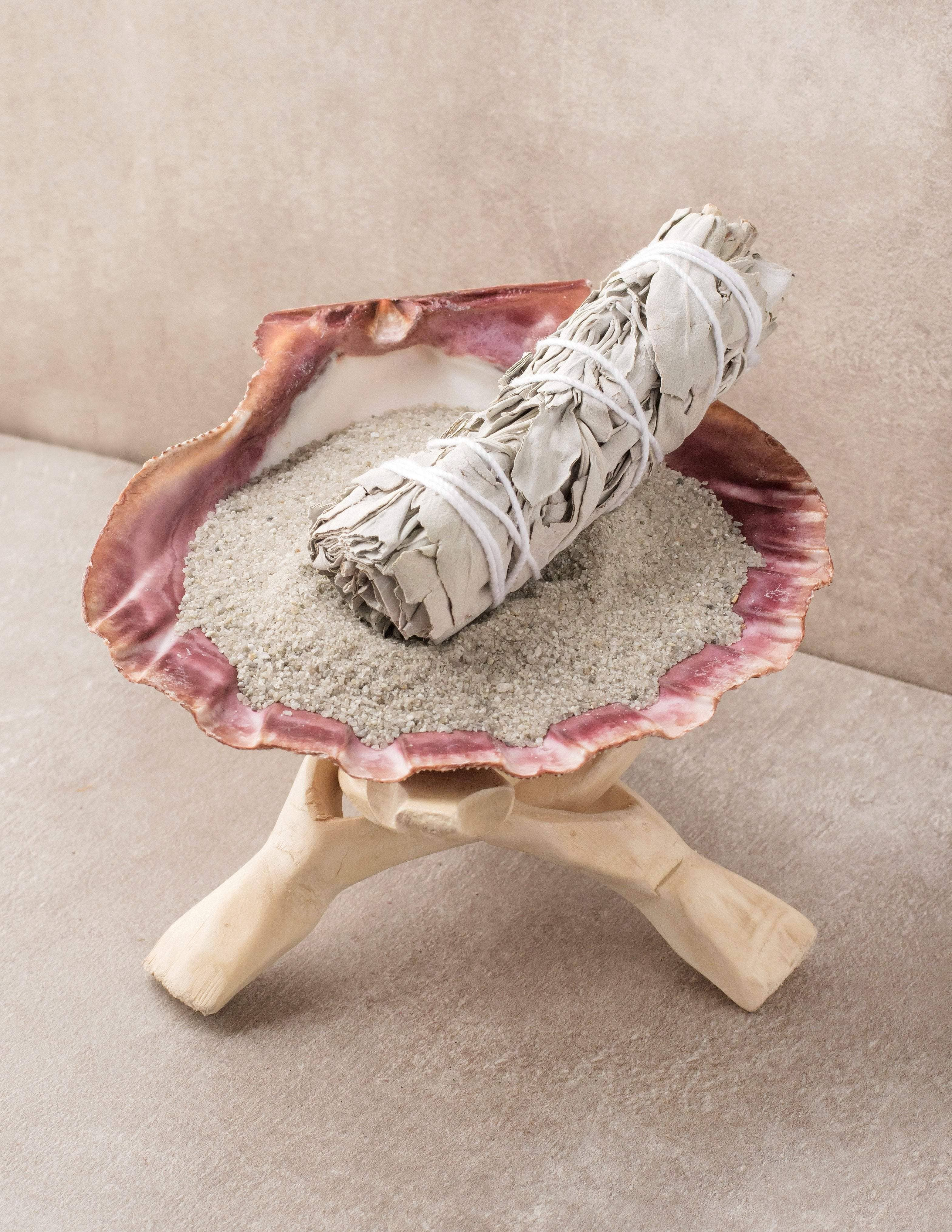 Image of Lion Paw Smudge Shell Set