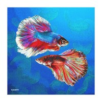 Two Fighting Psychedelic Colorful Fish Psychedelic Canvas Print