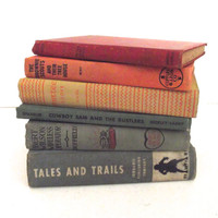 Collection of Vintage Children's Novels, Books in Muted Rainbow Colors, Decorator Set