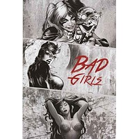 DC Comics Bad Girls Poster 22x34