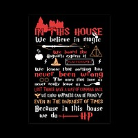 Harry potter - In this house we believe in magic - poster18x24 - TL01305PO