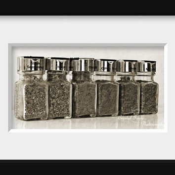 Spices Photo - A Bunch Of Flakes - Fine Art Photography 8x16 Panoramic Print