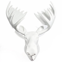 Moose Head - White Lacquer | Z Gallerie