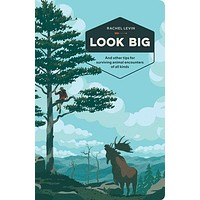 Look Big Book