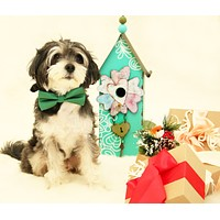 Green dog Bow tie collar, Pet Wedding accessory