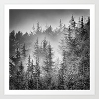 BW. Early moorning... Into the foggy woods Art Print by Guido Montañés
