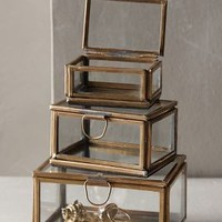 Mirrored Image Display Boxes by Anthropologie in Bronze Size: Set Of 3 Wall Decor