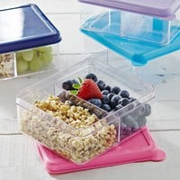 Dual Compartment Lunch Container