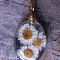 Real Daisy Necklace - Real Pressed Daisies Encased in Resin - Pressed Flower Jewelry - Daisy resin Necklace - Wire Wrapped Pendant