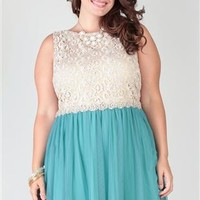 plus size, boat neck lace tank body with 3d stone applique trim waist and a tulle circle skirt