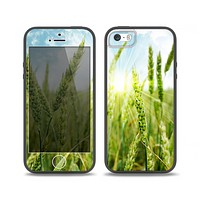 The Sunny Wheat Field Skin Set for the iPhone 5-5s Skech Glow Case