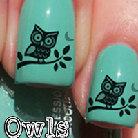 Nail WRAPS Nail Art Water Transfers Decals - Turquoise and Orange Owl - S779