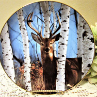 Deer Stag Plate Limited Edition by Bob Travers Collector Porcelain Fine China blm