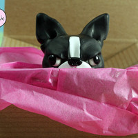 Angry Boston Terrier Figurine - Weird Polymer Clay Sculpture - Offbeat Gift for BT Lovers