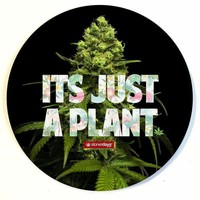 ITS JUST A PLANT DAB MAT