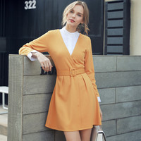 Long Sleeve Stand Collar Mini Office Dress
