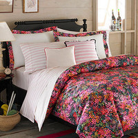 Teen Vogue Bedding, Midnight Comforter Sets - Bed in a Bag - Bed & Bath - Macy's