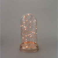 Fairy Lights in Clear Glass Cloche Copper / Rose Gold - med