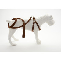 R. Horn Stag Leather Harness, Leash, and Leash Bag | Neue Galerie Design Shop & Book Store