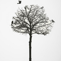 Urban Outfitters - Silhouette Tree Wall Decal