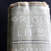 "old book  //  ""marriage guide"" the origin of life: dr. hollick's complete works // cr 1878 and 1902"