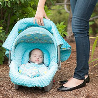 Kennedy Carseat Canopy Whole Caboodle