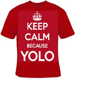 keep calm because yolo t shirt , cool funny statement tee shirt, t-shirts you only live once