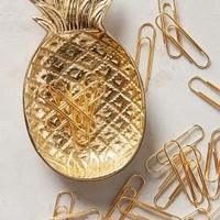 Ananas Trinket Dish & Clips by Anthropologie in Bronze Size: One Size Books