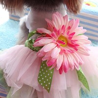 MUQGEW Warm Mordern Fashional Dog Gauze Clothes For Pet Dog Cat Clothes Party Bowknot Hot Dog Clothes For Small Dogs