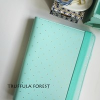 A5 WHITE/MINT GOLD DOTS PLANNER - FREE SHIPPING