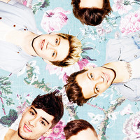 One Direction Flowers Art Print by dan ron eli