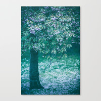 Song of the Tree Canvas Print by Katerina Lesslerova