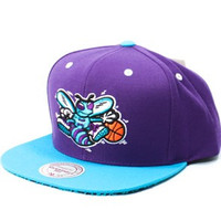 Mitchell & Ness Charlotte Hornets Cracked Pattern Underbill Snapback Hat in Purple & Teal