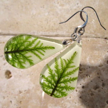 Stair Step Moss (Hylocomium splendens) Teardrop Earrings, woodland, forest, bryophyte, plant jewellery, rustic, Surgical steel