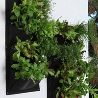 Wall Mount Indoor/Outdoor Vertical Pocket Planter