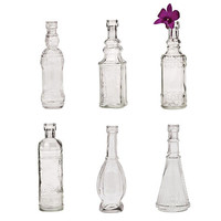 Antique Bottle Vases (Set of 6)