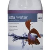 Betta Pre-Conditioned Water 0.5 Gallon