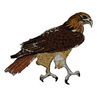 Red Tail Hawk Applique Patch (Iron on)