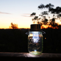 Lime green stained solar powered Ball Mason jar lantern, handmade and hand assembled in Sydney