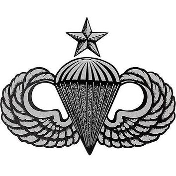 Army Senior Para Wing Clear Decal