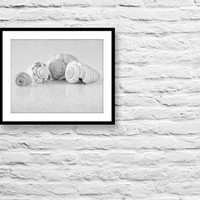 Still life photography, black and white fine art photography, shells photo print, monochrome wall decor photo print, nautical wall decor