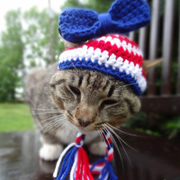 Cat Hat Cat Costume Small Dog Hat Small Dog Costume - Fourth of July - July 4th - The Independence Day Cat Hat