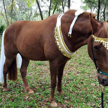 White and Gold Parade Costume for Horses - White with Gold Metal Coins, Horse Costume, Equine Costume